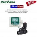 Rain Bird WPX1 Kit Programmatore Autonomo Batteria 9V 1 Stazione Wp WP1 Wpx Dv